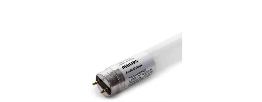 Tubos LED Philips